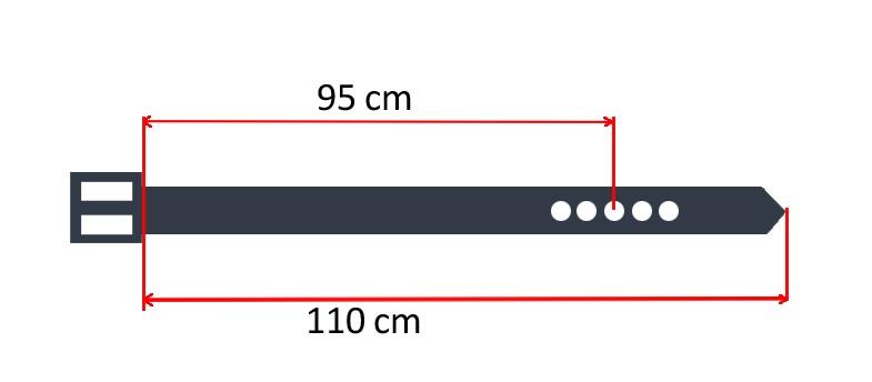 belts-sizes